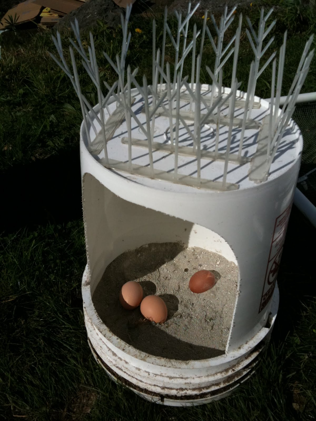 Portable chicken coop opt out en masse