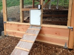 Pullet Shut chicken door on automatic light sensor