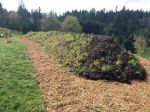 New wood chip paths around hugel bed