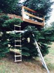 Treehouse at final stages...almost done!
