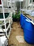 Greenhouse starting anew for the season