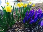 Love spring color.