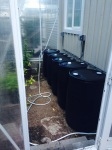 Remodeling the greenhouse, 2