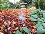 Pagodas love the fall