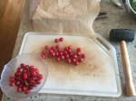 Cherries: de-pitting station